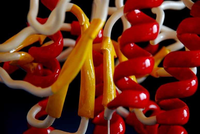 detail of 3d printed molecular model