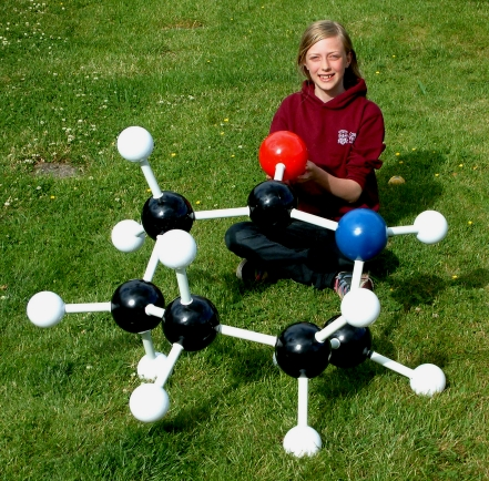 A girl sitting behind a giant molecular model of caprolactam